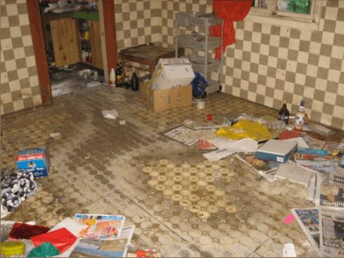 Audits Queensland AAQ PL - Use of Asbestos in Floor Coverings