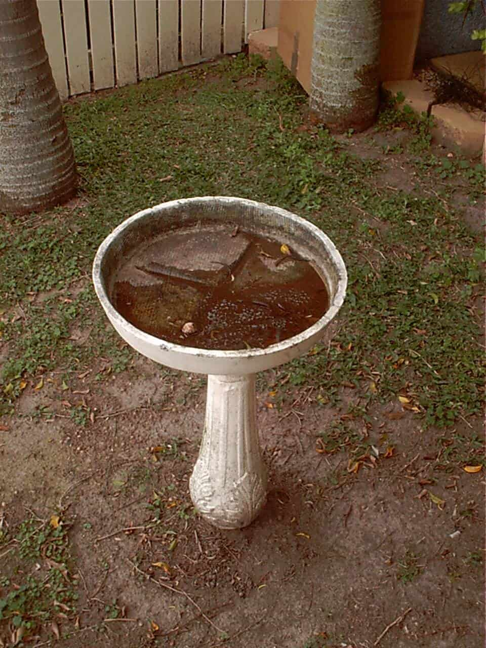 Asbestos Audits Queensland AAQ PL - Birdbath can contain Asbestos